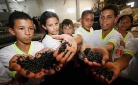 alunos-visitam-fabrica-de-reciclagem