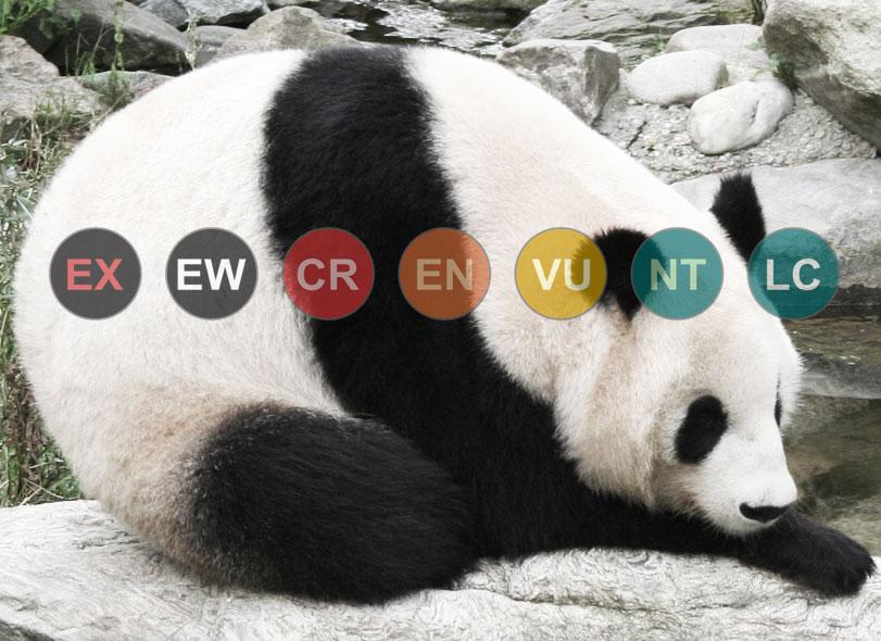 Entenda a classificação da Lista Vermelha da IUCN