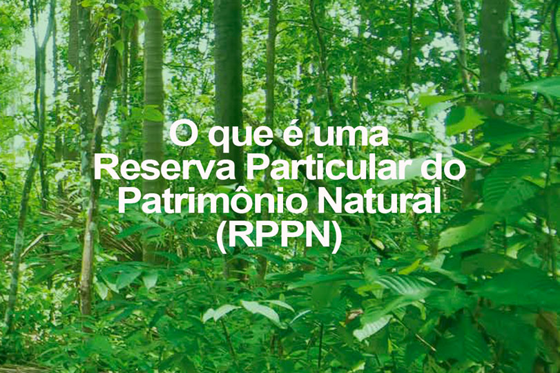 O que é uma Reserva Particular do Patrimônio Natural (RPPN)