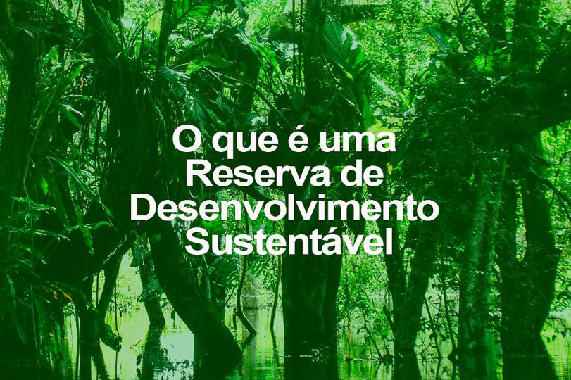 O que é uma Reserva de Desenvolvimento Sustentável