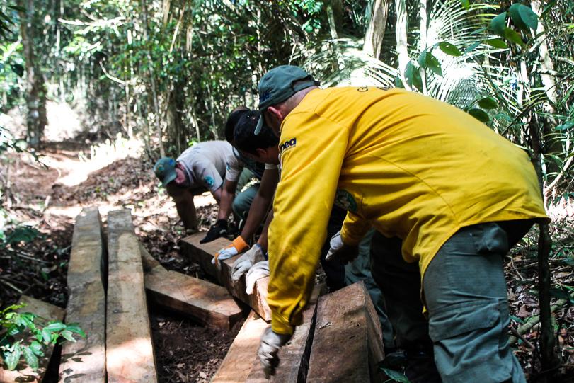 Madeira nativa aprendida pelos guarda-parques Foto: UPAM / Desengano