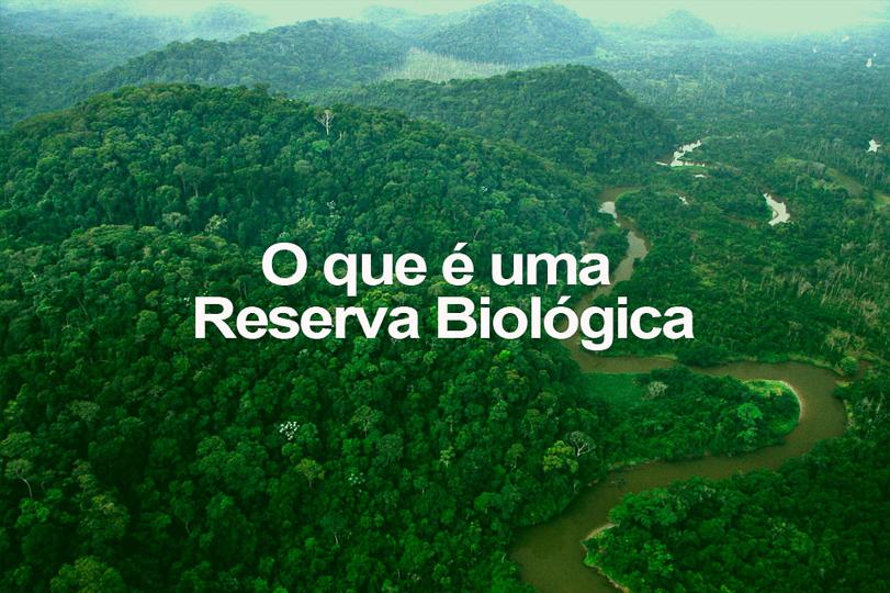 O que é uma Reserva Biológica