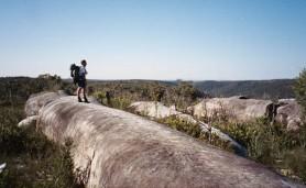 cartao_postal_australia_whaleback