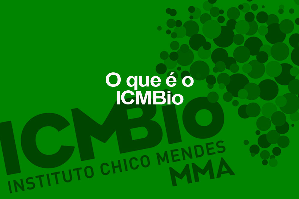 Para que serve o Instituto Chico Mendes?