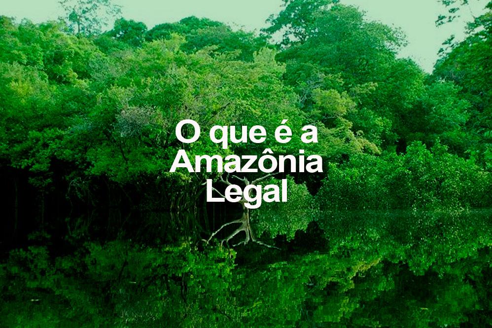 O que é a Amazônia Legal