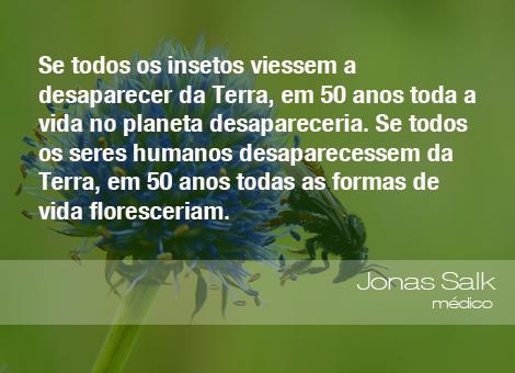 Frases do Meio Ambiente – Jonas Salk, médico (26/09/14)