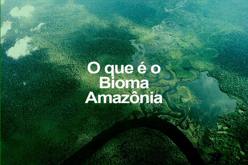 O que é o bioma Amazônia