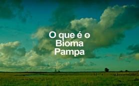 o-q-e-o-bioma-pampa