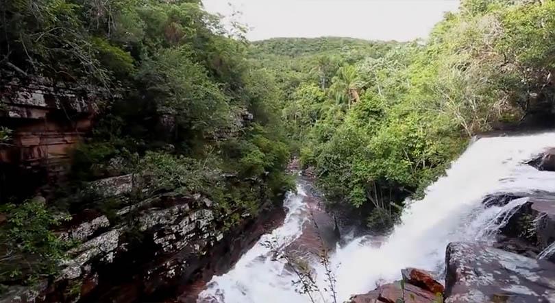 Parques Nacionais e o Dia da Amazônia